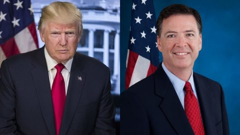 What best describes your feelings about Trump's decision to fire the FBI director?