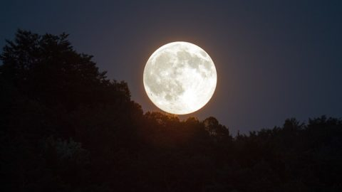 Do you suffer from sleeplessness during a full moon?