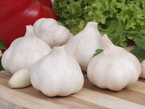Does it disturb you if someone has eaten garlic?